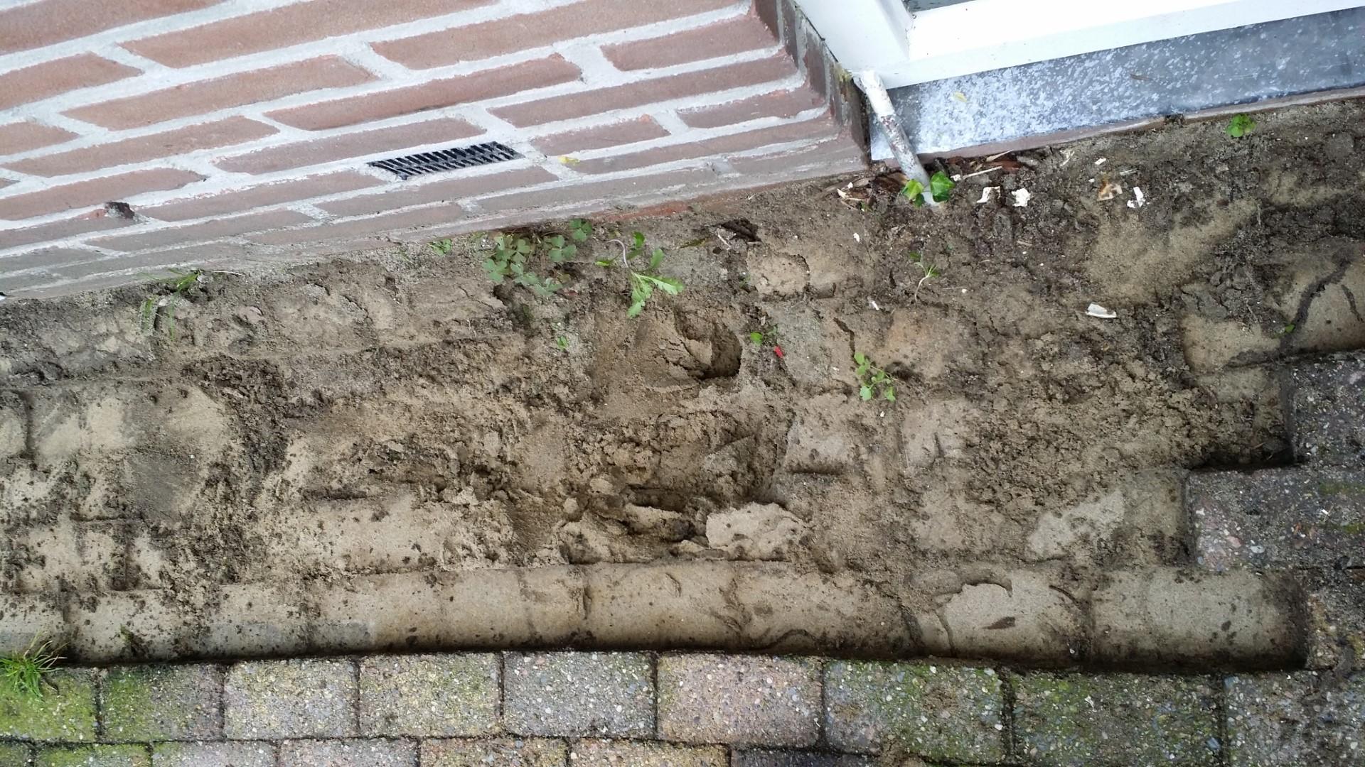 Tuin Zand Afvoeren : Tuin zand afvoeren grond of aarde afvoeren grondcontainer huren